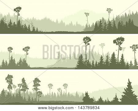 Set horizontal banners of wild coniferous forest with glade.