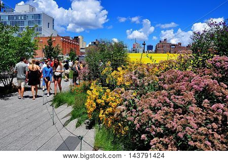 New York City - August 4 2013: People strolling past lush gardens filled with wildflowers on the High Line Park built on an old elevated freight rail line in lower Manhattan *