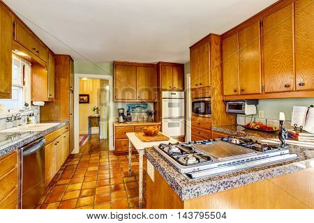 Craftsman Kithcen Room Interior With Wooden Cabinets, Granite Counter Top