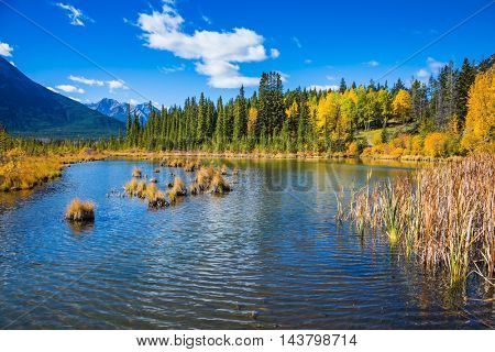 Shallow Lake Vermilion is surrounded by forests and mountains. Indian summer in the Rocky Mountains of Canada