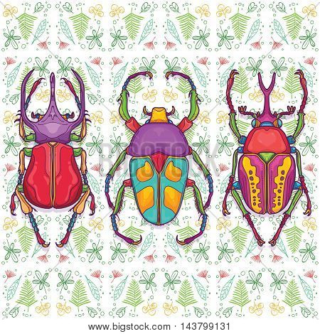 Vector Illustration of Insect Beetle Design Elements with Line Graphic. Circle life Day  Night and Four Seasons in Nature Concept