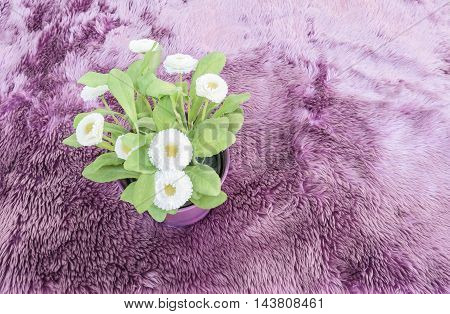 artificial plant with white flower in purple pot on purple carpet, top view
