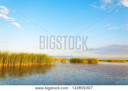 steppe summer. Turgai gate. Turgai save. National Park