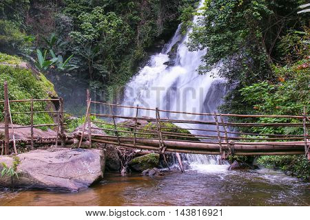 Tropical rain forest landscape with jungle plants, flowing water of Pha Dok Xu waterfall and bamboo bridge. Mae Klang Luang village, Doi Inthanon National park, Chiang Mai, Thailand.