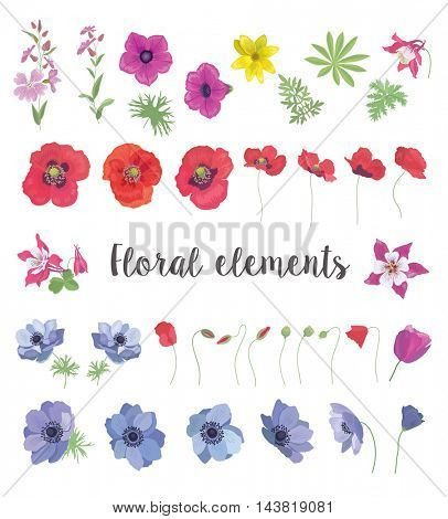 Set of Floral  Elements for your Design. Collection of Flower and Leafs for Greeting Card, Invitation, Wedding, Decoration.