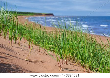 Empty beach in rural Prince Edward Island, Canada.