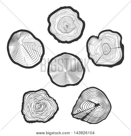 Tree-rings vector set. Wood ring saw cuts with linear tree texture