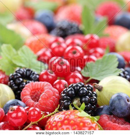 Berry Fruits Berries Collection Strawberries, Blueberries Raspberries Fruit Leaves Copyspace