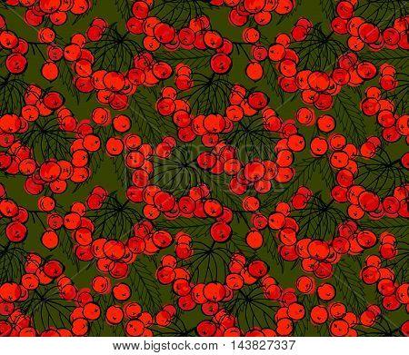 Rowan Berries On Green