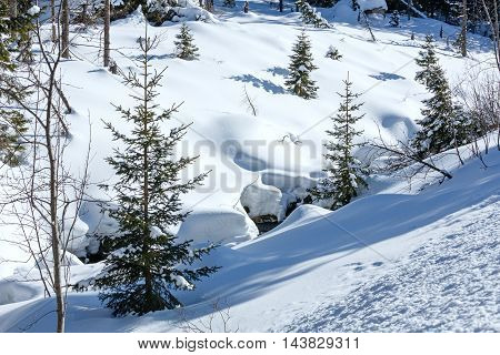 Winter Mountain Landscape.