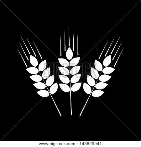 Vector icon of three wheat ears white on black