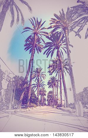 Palm trees in Palma de Mallorca at beautiful sunny day. Image of tropical vacation and sunny happiness. Vintage painting, background illustration, beautiful picture, travel texture