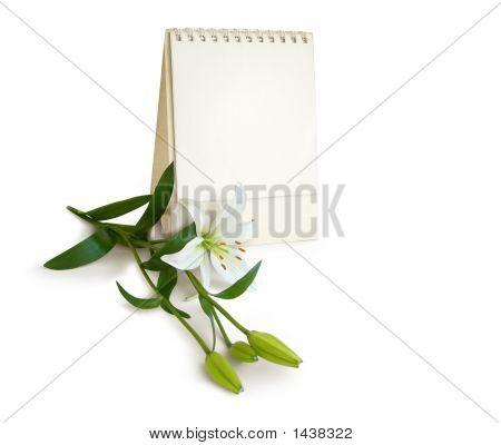Happy Special Day, My Love. Flower, Calendar