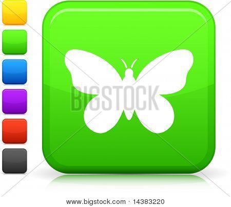 Butterfly icon on square internet button  Six color options included.