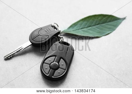 Car key with green leaf on table