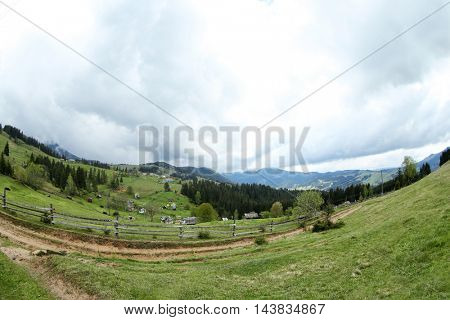 Forest green hills in mountains