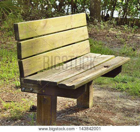 Wooden bench in a park in Florida
