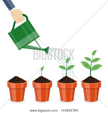 Watering can and plants in pots on white background.