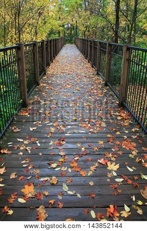 A Foot Bridge On A Rainy Day During Autumn In The Park Sharon Woods Southwestern Ohio