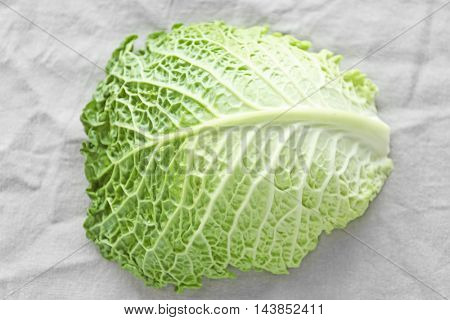 Savoy cabbage leaf on light background