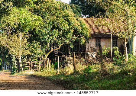 typical architecture of a countryside home of Brazil