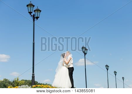 Newlyweds Kissing Against The Sky