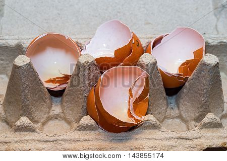 close up of four egg shells in box