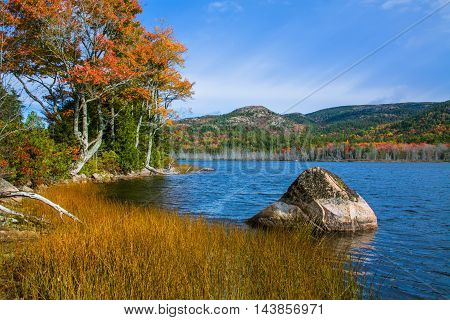 A Large Glacial Erratic Boulder Sits In Seal Cove Pond On A Beautiful Autumn Afternoon Mount Desert Island Acadia National Park Maine USA