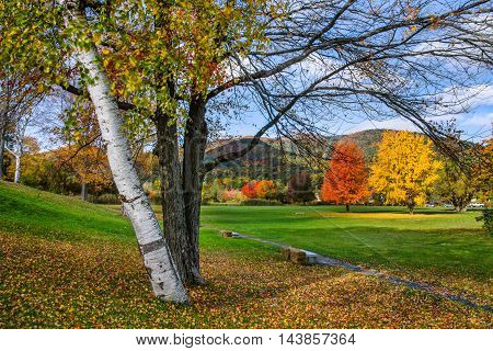 Trees in Battlefield Park Ablaze With the Colors of Autumn Lake George in the Adirondack Mountains of New York State USA