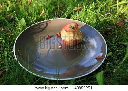 Bitten apple on plate in a summer park