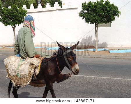 Elderly man riding on a donkey. Morocco