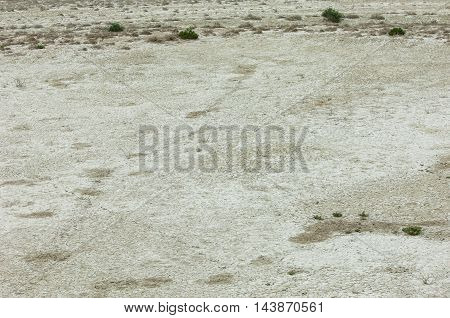 Steppe Etosha. Kazakhstan steppe photos, savanna, africa,