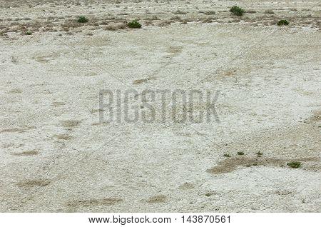 Steppe Etosha. Kazakhstan steppe photos, savanna, africa,