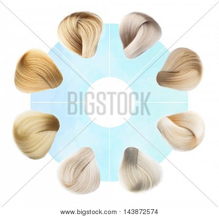 Hair Colors Set. isolated on a white background
