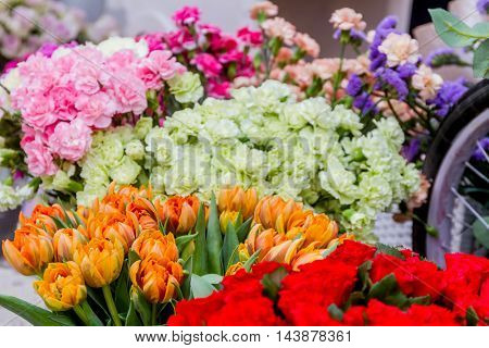 flower market, bright vivid colorful fresh flowers