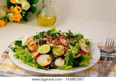 Spring salad with mustard oil cucumber lettuce radish and herbs on white plate
