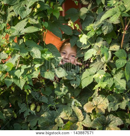 Little girl peeking out of garden greens.