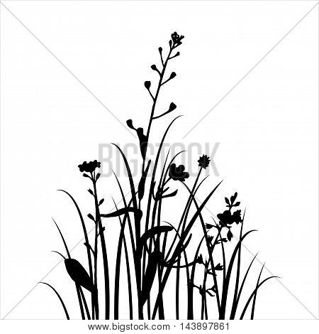 vector silhouettes of flowers and grass, background with wild plants, herbal bacdrop, black monochrome floral template, hand drawn illustration