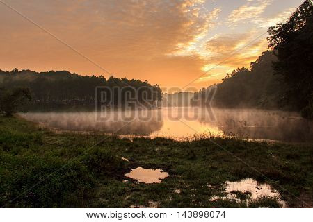 Sunrise at Pang-ung pine forest park Mae Hong Son North of Thailand edit warm tone