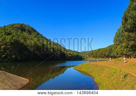Sunshine at Pang-ung pine forest park Mae Hong Son North of Thailand