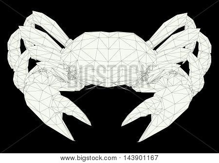 Crab consisting of a outlines on a black background. Vector illustration.