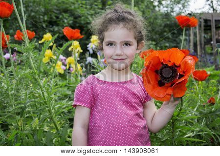 In summer the garden is a little sweet girl in the poppies.