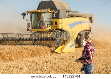Big Combine harvester in summer with sun