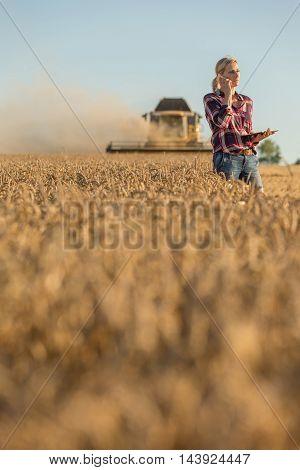 Female farmer walking through field checking wheat crop