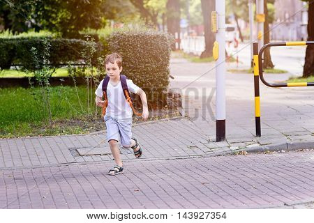 Little 7 Years Schoolboy Waiting For Green Light.