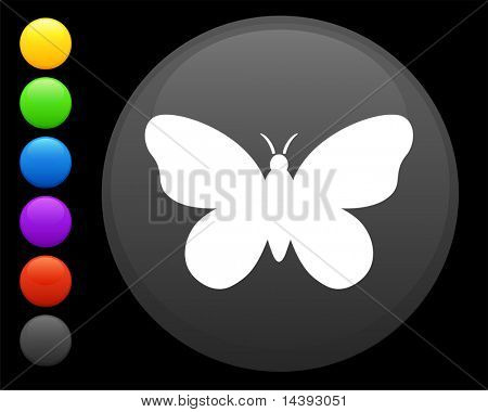 butterfly icon on round internet button original vector illustration 6 color versions included