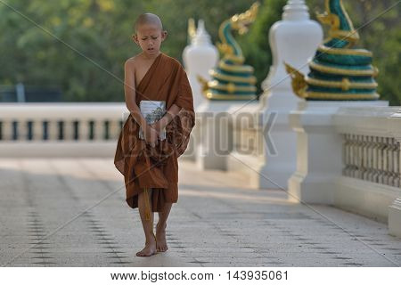 Learn novice monk in a quiet country.