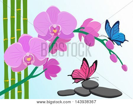 Floral design background. Pink orchid flowers bamboo stalks and butterflies on blue background. Vector illustration.