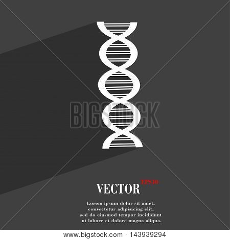 Dna Symbol Flat Modern Web Design With Long Shadow And Space For Your Text. Vector