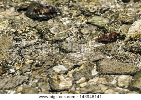 under river water rounded stones sunny day closeup